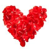 Le jour rouge de Valentine de pétales de roses Images stock