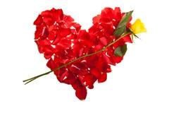 Le jour rouge de Valentine de pétales de roses Image libre de droits