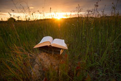 Le journal intime ouvert de livre de livre cartonné, les pages éventées sur la nature brouillée débarque Photos libres de droits