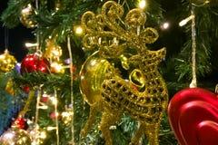 Le Joyeux Noël et la bonne année, ceci est le pin qui est de décorer de l'or et les boules rouges, les cerfs communs jaunes, la c images libres de droits