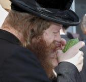 Le juif religieux examine l'agrume Image stock