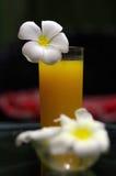 Le jus d'orange frais fraîchement serré avec la magnolia fleurit sur le Th Image libre de droits