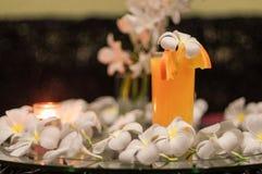 le jus d'orange frais fraîchement serré, plan rapproché avec une magnolia fleurit sur les glas Photographie stock libre de droits