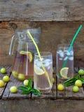 Le jus ou la boisson fraîche avec des glaçons et une tranche de citron avec une prune et un basilic jaunes photographie stock libre de droits