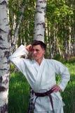 Le karateka. Images stock