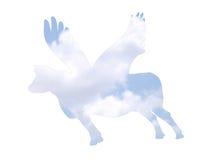 leć krowy Zdjęcie Royalty Free