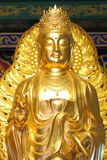 Le kuan d'or Image libre de droits