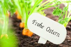 Le légume de carotte se développe dans le jardin avec le panneau des textes à B allemand photo stock