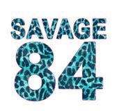 le léopard a modelé le nombre, graphique de T-shirt illustration libre de droits