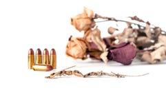 le lézard de couples sont mort parmi le driedflower et la cartouche ou Images stock