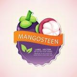 Le label de fruit de mangoustan, illustration Photo libre de droits