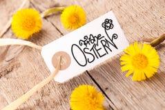 Le label, pissenlit, calligraphie Frohe Ostern signifie Joyeuses Pâques images libres de droits