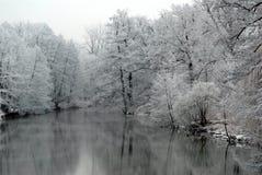 Le lac avec la neige a couvert des arbres Image libre de droits