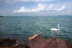 Le Lac Balaton, Shiofok, Hongrie photographie stock libre de droits