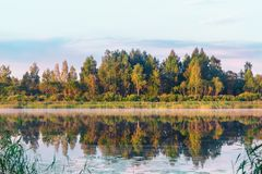 Le lac biélorusse dans la perspective d'une forêt verte qui réfléchit sur la surface aqueuse à la lumière du soleil de matin photos libres de droits