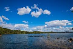 Le lac Borovoe avec des mouettes et le pin étayent sur le ciel de nuage en parc national Burabai, Kazakhstan Photographie stock libre de droits