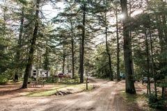 Le lac Canada de paysage de forêt naturelle de parc national d'algonquin de terrain de camping de deux rivières du beau a garé la Image stock