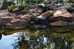 Le lac clair image libre de droits
