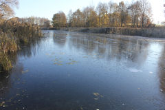 Le lac congelé d'hiver en bois Image libre de droits
