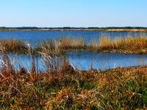 Le lac dans la steppe images libres de droits