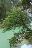 Le lac de Braies Photos stock