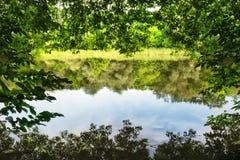 Le lac est encadré par le feuillage vert image libre de droits