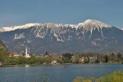 Le lac et les alpes Photos stock