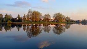 Le lac et les arbres Photo libre de droits