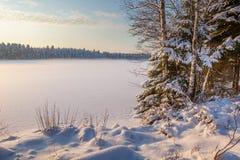 Le lac figé de l'hiver en bois sous la neige Photos stock