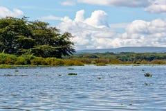 Le lac Naivasha Image libre de droits