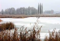 Le lac retenu par les glaces Photo stock