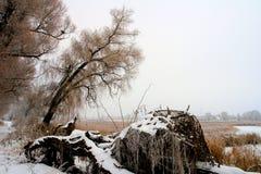 Le lac retenu par les glaces Photos libres de droits
