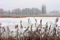 Le lac retenu par les glaces Image stock