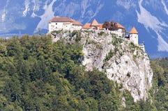 Le lac a saigné la Slovénie Photo stock