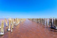 Le lac salé avec l'eau rose et la plage du sel Vieux pilier de rondins sur le lac Sasyk en Crimée Image libre de droits