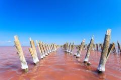 Le lac salé avec l'eau rose et la plage du sel Vieux pilier de rondins sur le lac Sasyk en Crimée Photos libres de droits
