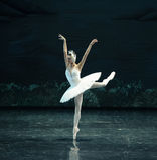 Le lac swan de bain-ballet de cygne Photo stock