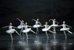 Le lac swan de fille-ballet de cygne Photographie stock
