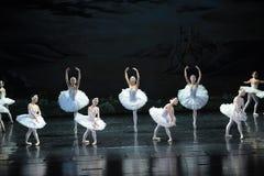 Le lac swan de fille-ballet de cygne Images libres de droits