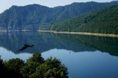 Le lac Vidraru en montagnes de Fagaras de la Roumanie image libre de droits