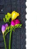 Le lacet fleurit le cadre Photographie stock libre de droits