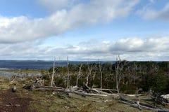 Le Lago Blanco sur l'île de Tierra del Fuego Photos stock