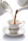 Le lait et le café se sont renversés dedans une tasse Image libre de droits