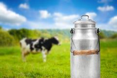 Le lait peut contre le pré de pâturage de vache photographie stock libre de droits
