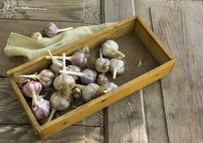 Le lampadine dell'aglio del primo piano ed i chiodi di garofano di aglio sopra wodeen Immagine Stock
