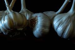 Le lampadine dell'aglio si chiudono in su fotografie stock libere da diritti
