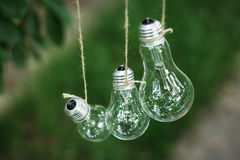 Le lampadine nel giardino appendono sull'albero Immagini Stock Libere da Diritti