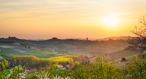Le Langhe, Barbaresco (Piemonte, Italy). Panorama at sunset royalty free stock photos