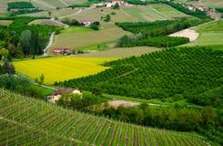 Le Langhe, Piedmont Stock Image