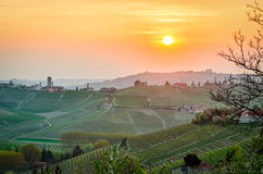 Le Langhe (Piedmont, Italy), landscape Royalty Free Stock Photo